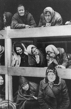 Former Women Prisoners Auschwitz after 1/27/1945. Courtesy of USHMM Photo Archives